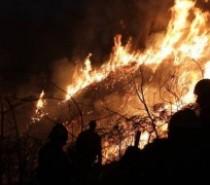 Incêndios florestais, uma ameaça a nossa riqueza natural